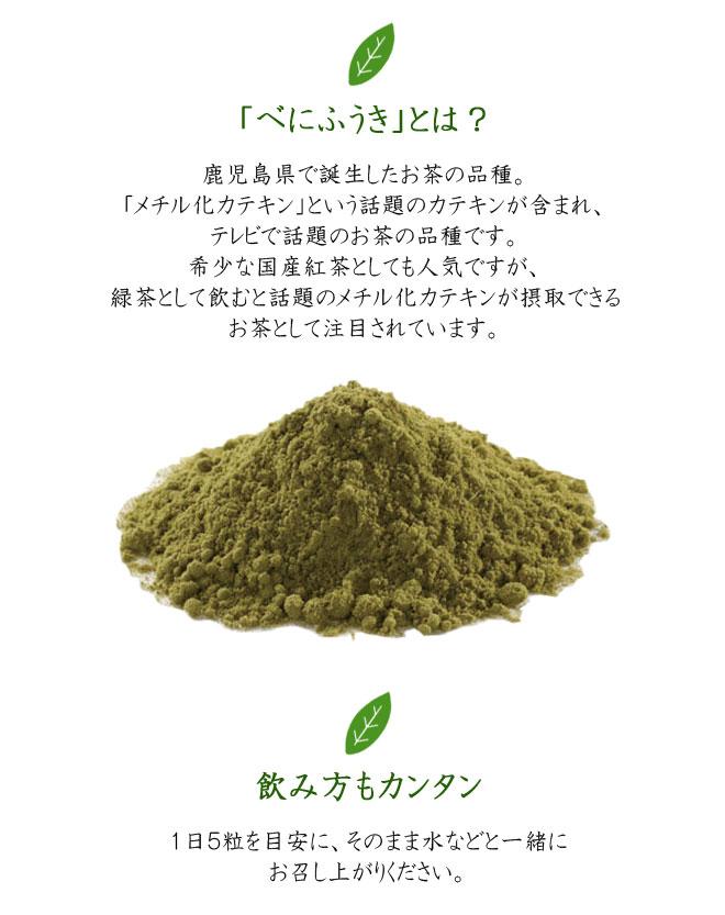 page_benifukinotikara4.jpg