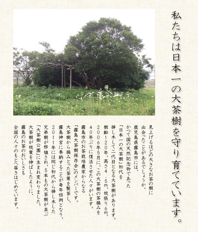 page_okukiri3.jpg