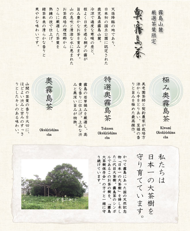 page_santi1.jpg