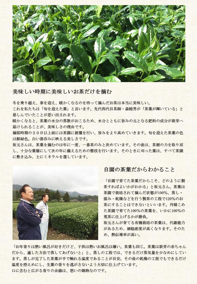 page_sakamotogyokuro3.jpg